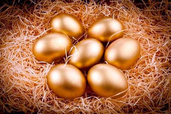 Заработок на птичьих яйцах